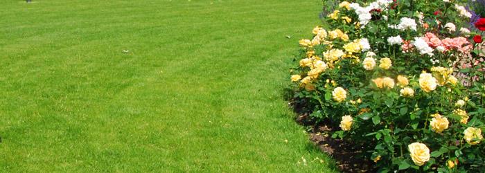 Pavillon im Garten aufstellen